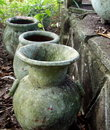 Weathered pots in mexican jungle Stock Images