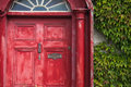 Weathered Red Door with Ivy Royalty Free Stock Photo
