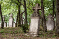 Weathered tombstones in an old cemetery th century german budajeno hungary Royalty Free Stock Photos