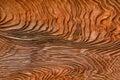 Weathered Wood Grain Panel Tex...