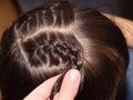Weave braids Royalty Free Stock Photo