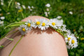 Weaving wreath daisies of flowers white lying on woman s knee Royalty Free Stock Photography