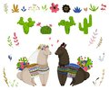 Sweet llamas couple with cacti and floral elements set. Cute cartoon characters in love. Design concept for wedding invitation, gr