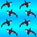 Killer whales on a blue gradient background - vector seamless marine pattern. Swimming orca seamless pattern with marine mammals.