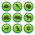 Web buttons pets paw print Royalty Free Stock Photo