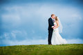 Picture : Wedding background  background