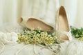 Wedding background, bridal accessory Royalty Free Stock Photo