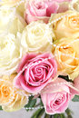 Wedding bouquet of beautiful rose Stock Images