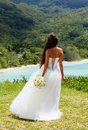 Wedding bouquet and groom of frangipani against the background the bay seychelles Royalty Free Stock Photos