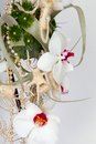 Wedding bouquet made ​​of orchids Stock Image