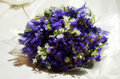 Wedding bouquet made of white and violet flowers Stock Photos