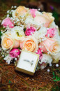 Wedding bouquet and pair rings lying of forest coniferous ground roses grounds Royalty Free Stock Images