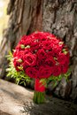 Wedding bouquet of red roses is on the background of tree bark