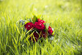 Wedding bouquet with red roses laying on grass Stock Photography