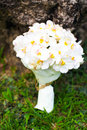 Wedding bouquet of white orchids Stock Photos