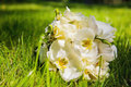 Wedding bouquet with white orchids on grass in summer park Stock Photos