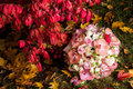 Wedding bridal bouquet with pink orchids roses daisies and red autumn leaves Royalty Free Stock Images