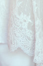 Wedding bridal veil picture of beautiful Royalty Free Stock Image