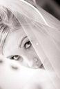 Wedding bride face half hide veil Stock Photography