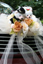 Wedding car with bear Royalty Free Stock Photo