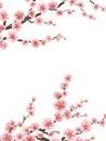 Wedding card with gentle sakura flowers. EPS 10