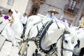 Wedding carriage with horses Royalty Free Stock Photo