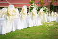 Wedding ceremony in beautiful garden Stock Image