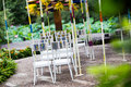 Wedding chair chairs at an outdoor party Stock Photography