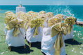 Wedding chairs row of white decorated with golden bows on the beach Royalty Free Stock Photography