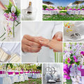 Wedding collage Stock Photography