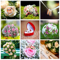 Wedding collage Royalty Free Stock Photos