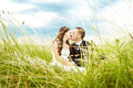 Wedding couple, bride and groom kissing  in grass Royalty Free Stock Photo