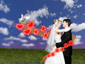 Wedding couple with dove on meadow collage Stock Image