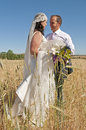 Wedding couple in the field Royalty Free Stock Photography
