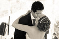 Wedding couple kissing and holding each other image in sepia tone Stock Images