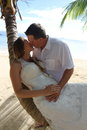 Wedding Couple Kissing on a Palm Tree in Fiji Royalty Free Stock Photo