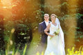 Wedding couple in a park summer Stock Photography