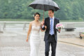 Wedding couple in a rainy day happy Stock Image
