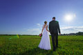 Wedding couple walking through green field young Royalty Free Stock Photo