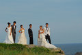 Wedding couples Stock Photography