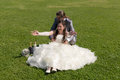 Wedding day bride and groom on their in the grass Royalty Free Stock Images