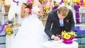 Wedding day - groom make the signature Royalty Free Stock Photo