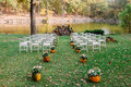 Wedding decoration with autumn pumpkins and flowers. Ceremony outdoor in the park. White chairs for guests Royalty Free Stock Photo