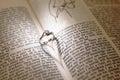 Wedding diamond rings on a bible Royalty Free Stock Photo