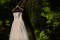 Wedding dress hanged in a tree nature Stock Photography