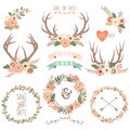 Wedding floral antlers elements a vector illustration of Stock Image