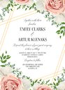 Wedding floral invite, invtation card design. Watercolor lavender pink rose, white garden peony flowers blossom, green leaves, gr Royalty Free Stock Photo