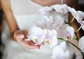 Wedding flower in a hand at the bride Stock Image