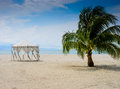 Wedding hut and palm tree on the beach langkawi island malaysia Stock Photography