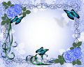 Wedding invitation Border Blue Roses  Royalty Free Stock Photo